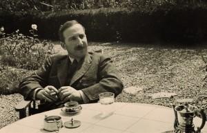 Zweig 04